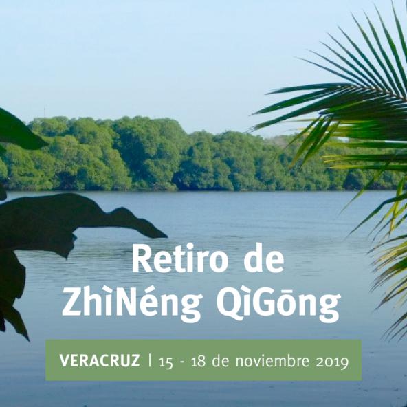 VZQ_anuncio 137 Retiro Veracruz-03
