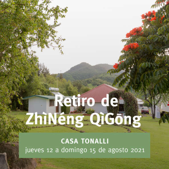 VZQ_anuncio 208 Retiro Tonalli-03